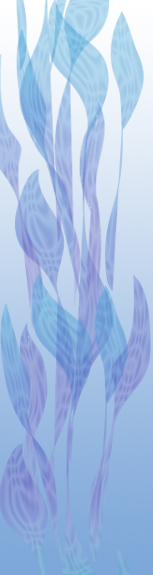 Blue Leaves Side bar graphic